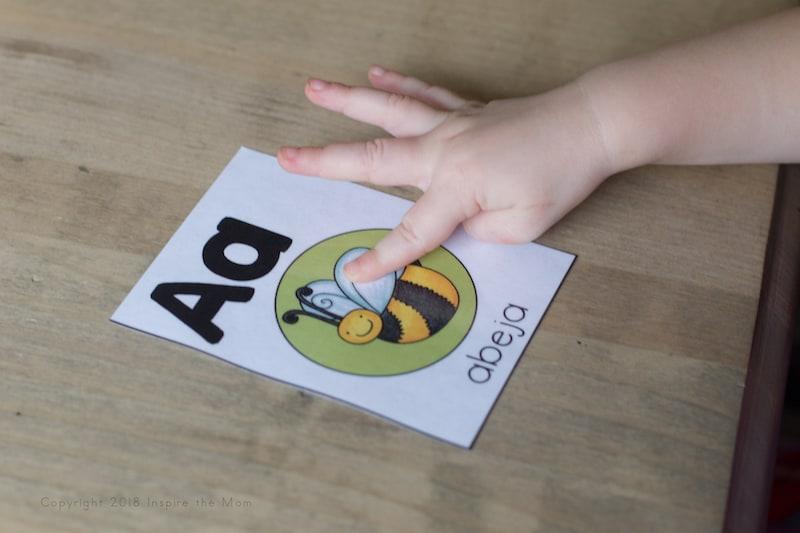 Spanish alphabet card letter a