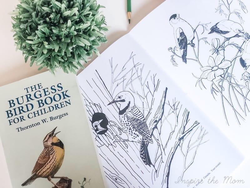 bird study books