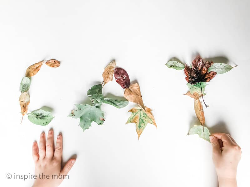 spelling activity with leaves