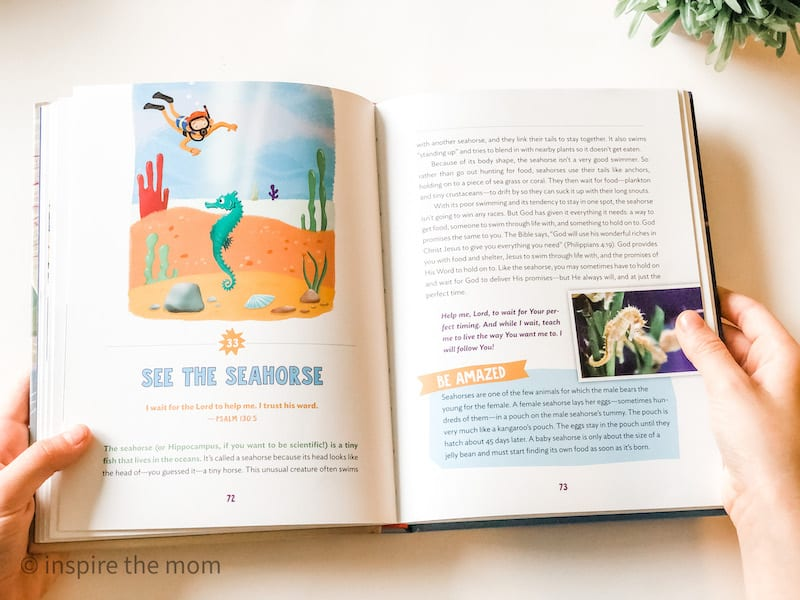 devotional book for kids