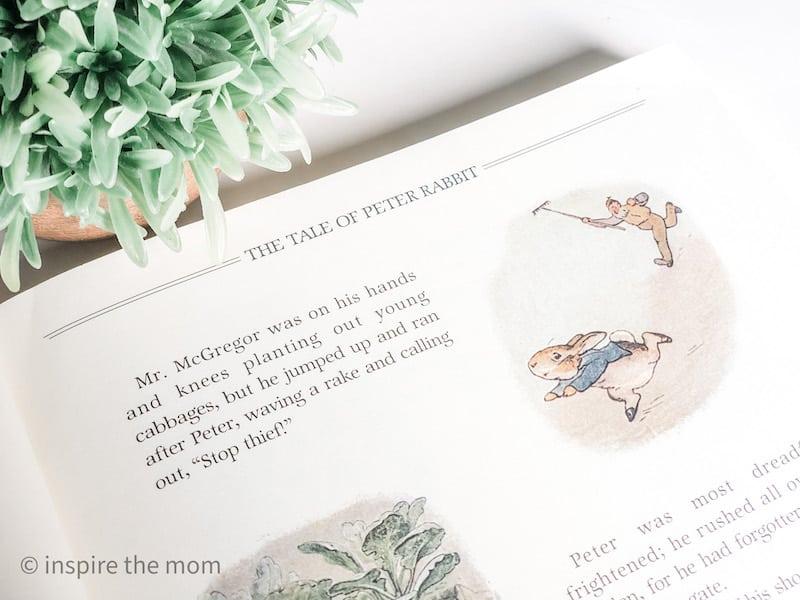 Beatrix potter picture book treasuries