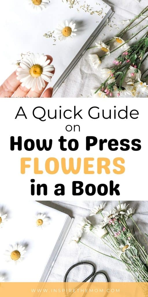 how to press flowers in a book pin