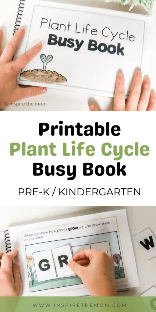 plant life cycle busy book pin